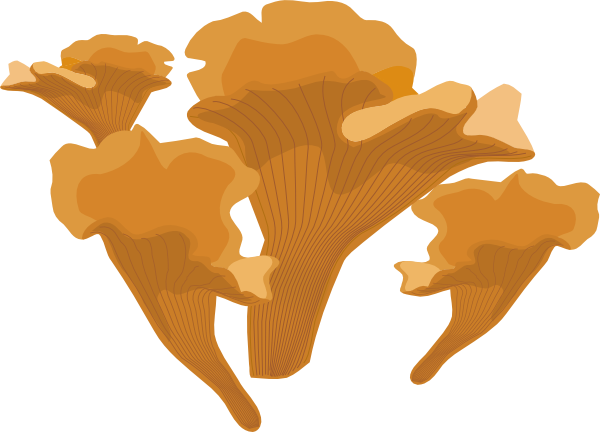 Fungus Clip Art at Clker.com.