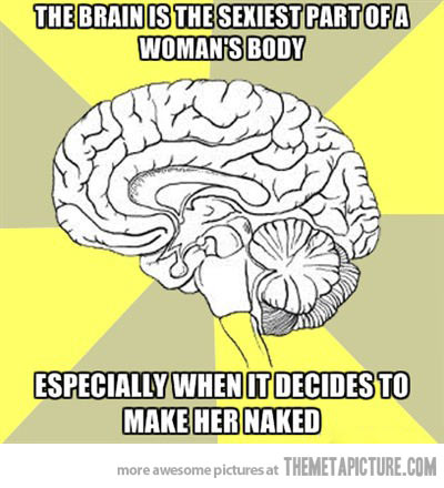 The female brain.