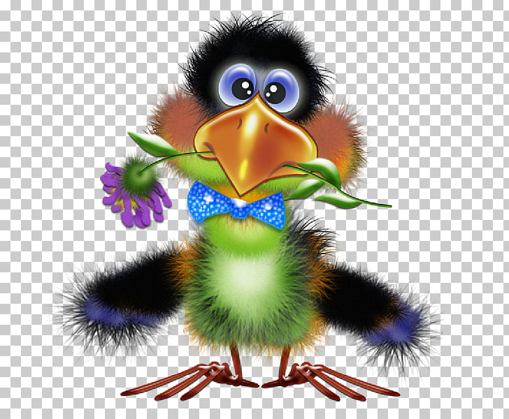 Bird Drawing Funny animal , toucan PNG clipart.