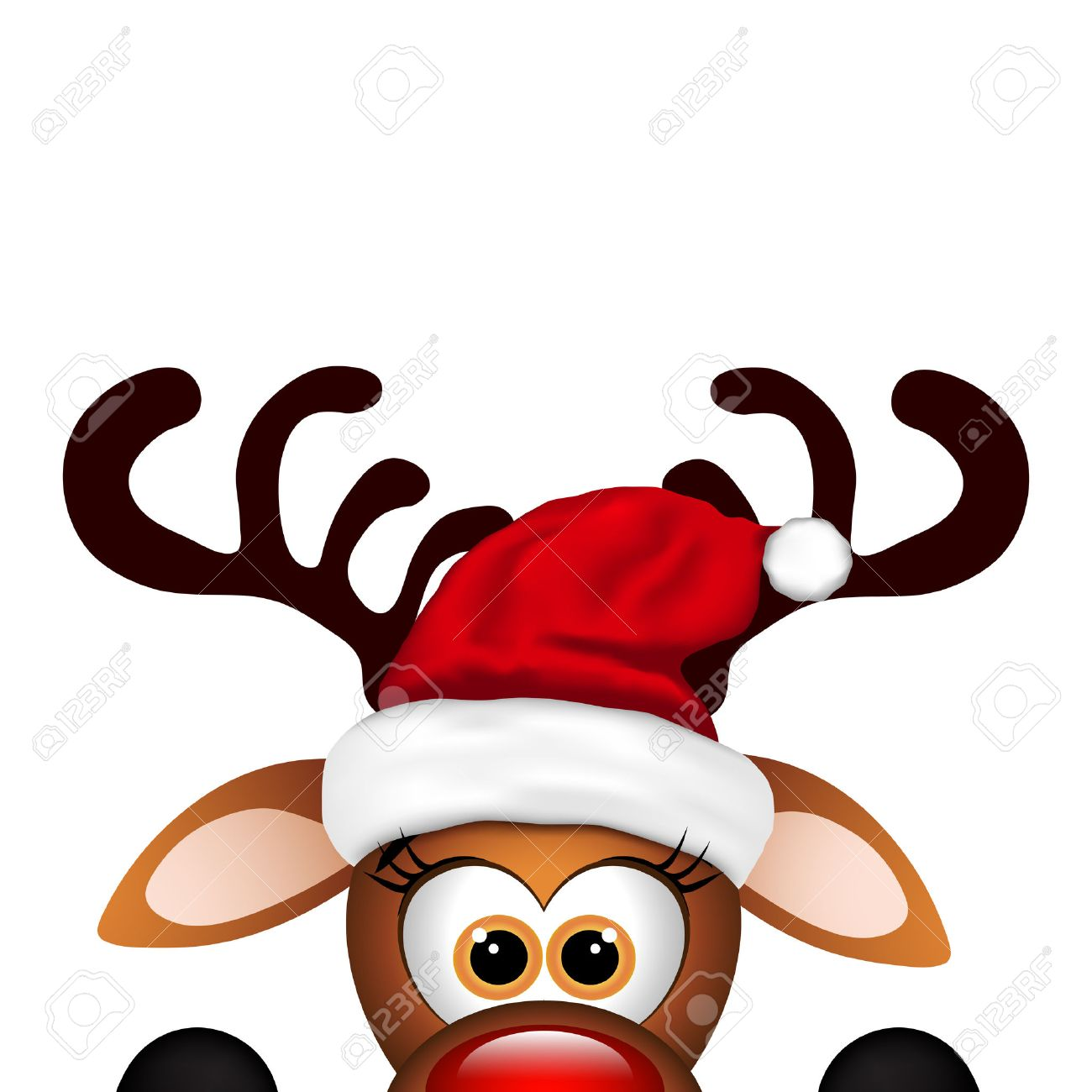 Funny Christmas Reindeer on a white background..