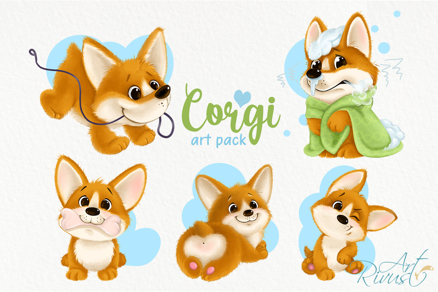 Corgi puppy PNG clipart download. Cute dog graphics. Funny.