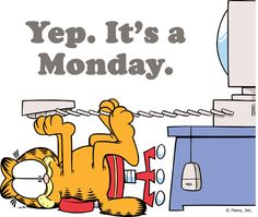 monday only happens once a week funny garfield days of the.