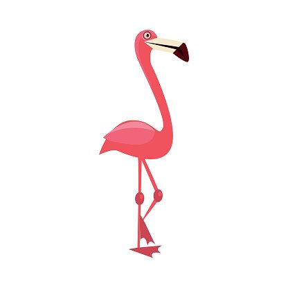 Pink Flamingo Funny Illustration Clipart Image.