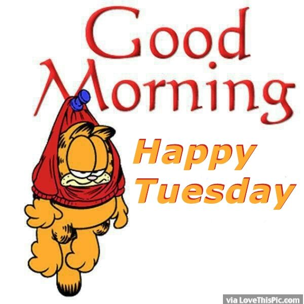 Garfield Good Morning Happy Tuesday Pictures, Photos, and Images for.