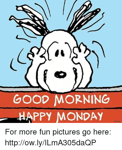 GOOD MORNING HAPPY MONDAY pNTS for More Fun Pictures Go Here.