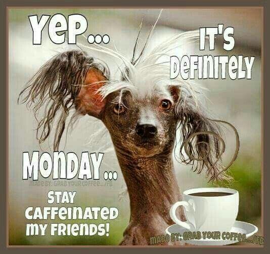 Monday ….