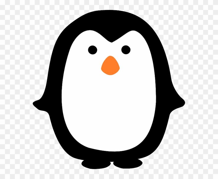 Cute Penguin Cartoon, Penguin Party, Pattern Pictures.