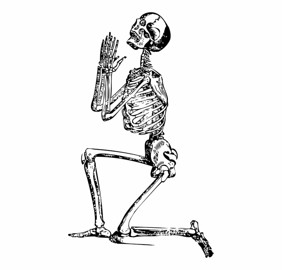 Funny Skeleton Png, Transparent PNG, png collections at dlf.pt.
