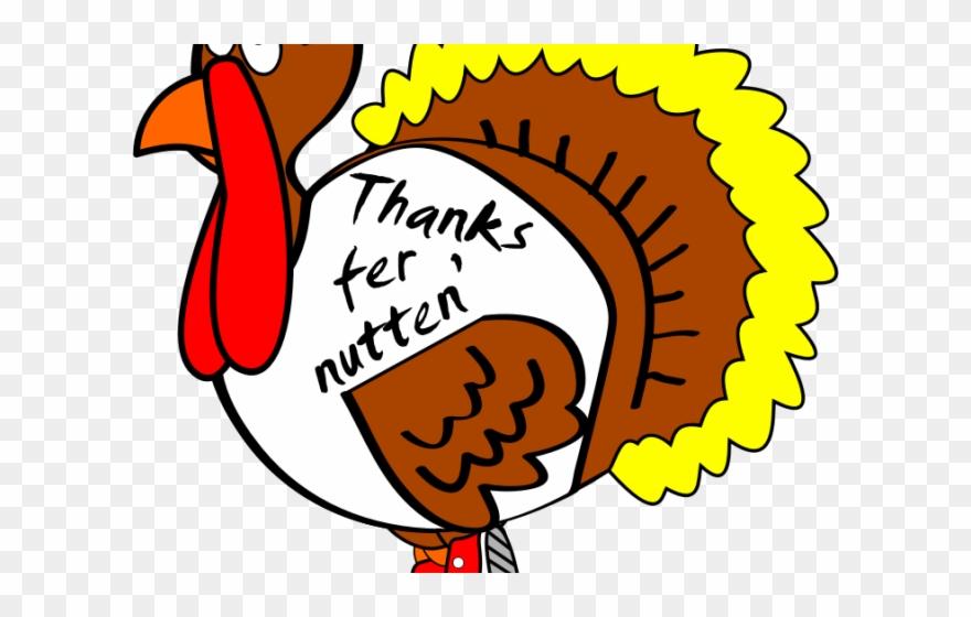 Turkey Bird Clipart Brown Turkey.