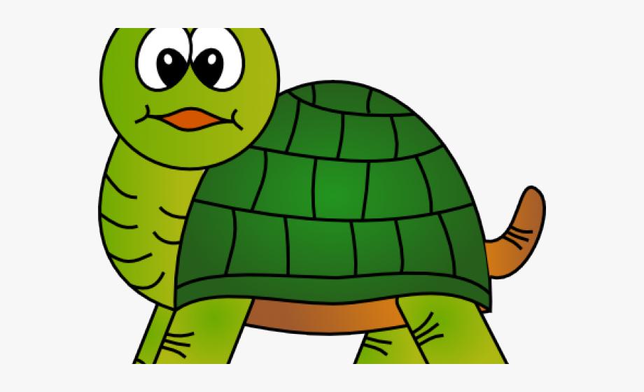 Tortoise Clipart Face.