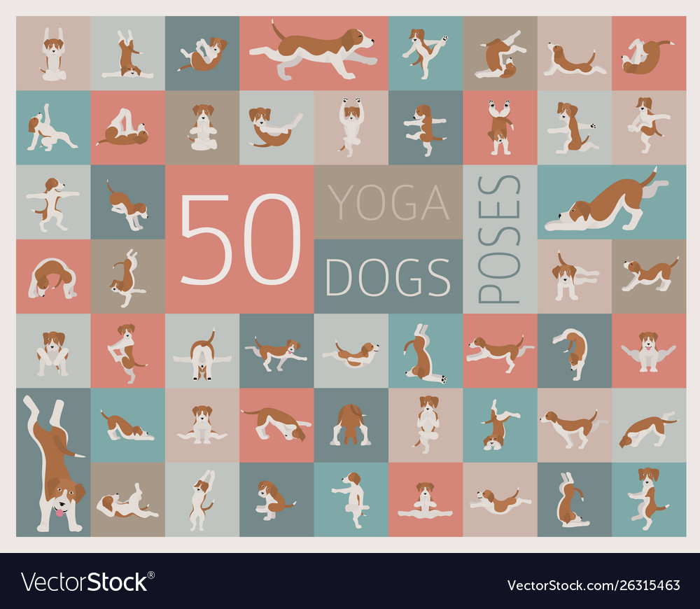 Yoga dogs poses and exercises doing clipart funny.