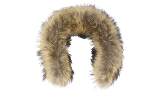 Fur Png Vector, Clipart, PSD.