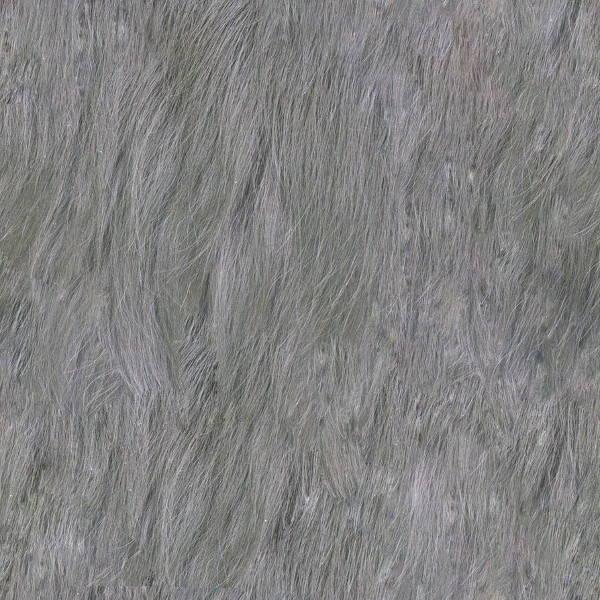 8+ Fur Textures.
