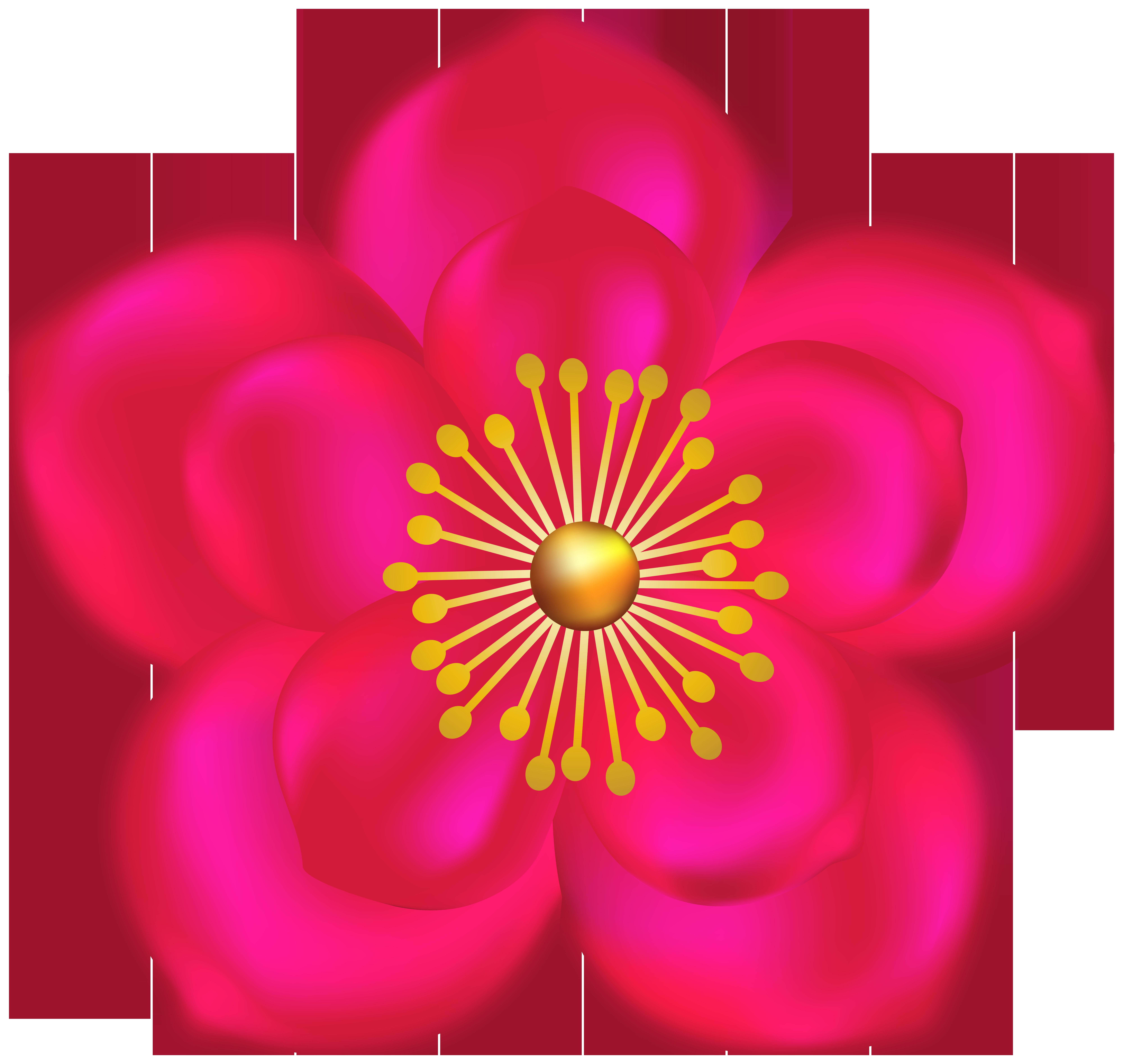 Fuchsia Flower Transparent Image.