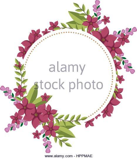 Fushia Stock Photos & Fushia Stock Images.