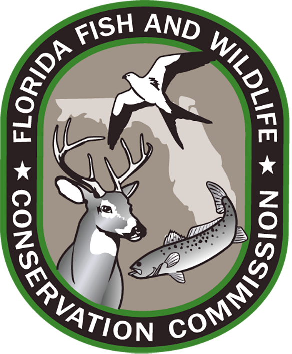FWC Team Among Those Studying Gulf Wildlife.