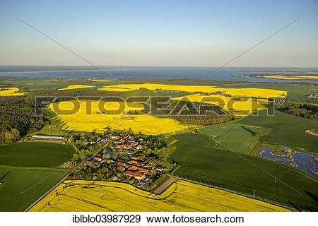 """Stock Photograph of """"Aerial view, Rape fields between Gohren and."""