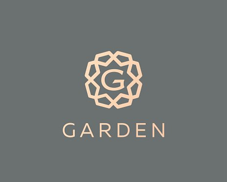 Premium letter G logo icon vector design. Luxury jewelry.