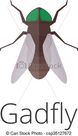 Vectors Illustration of Gadfly skin parasite insect bug. Bug.