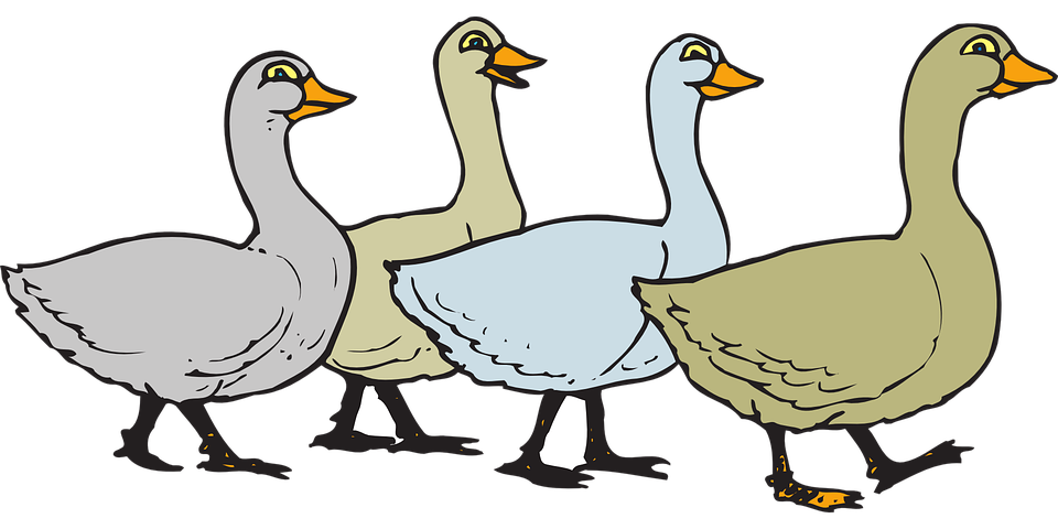 Flock of Geese Clip Art.