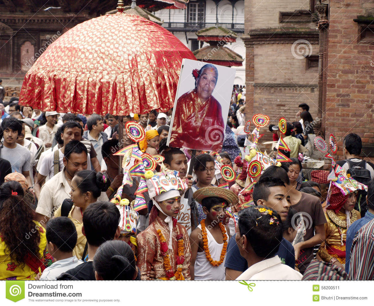 Procession In Festival Of Cows.
