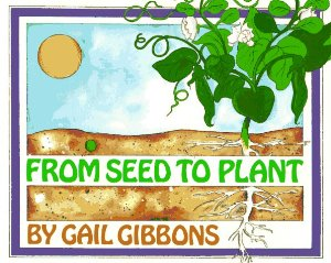 Kitchen Floor Crafts: Virtual Book Club: Seed Exploration with.
