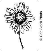 Gaillardia Vector Clip Art Illustrations. 4 Gaillardia clipart EPS.
