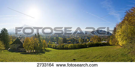 Stock Photo of Trees on landscape, Gaisberg, Aigen, Salzburg.
