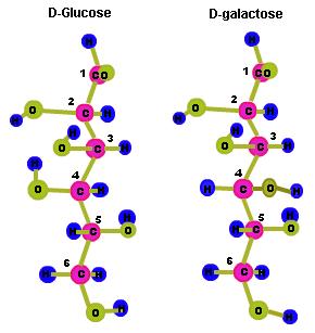 Epimer, Epimers of Glucose.