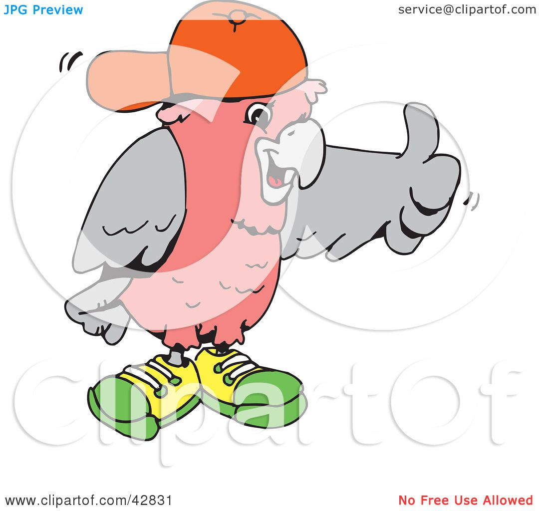 Clipart Illustration of a Galah Cockatoo Wearing Shoes And A Hat.