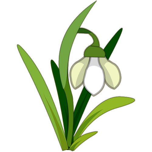 Snowdrop Flower Tattoo.