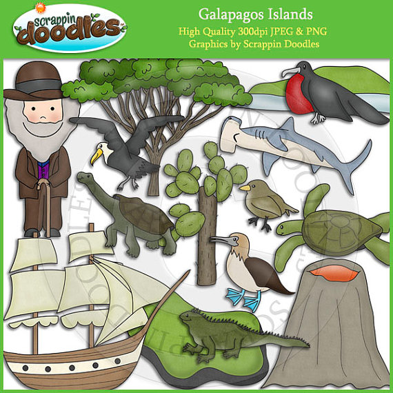 Galapagos Islands Clip Art Download by ScrappinDoodles on Etsy.
