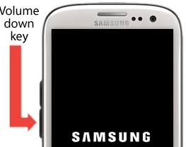 Fix Android Won\'t Turn On Or Stuck on Samsung Logo Screen.