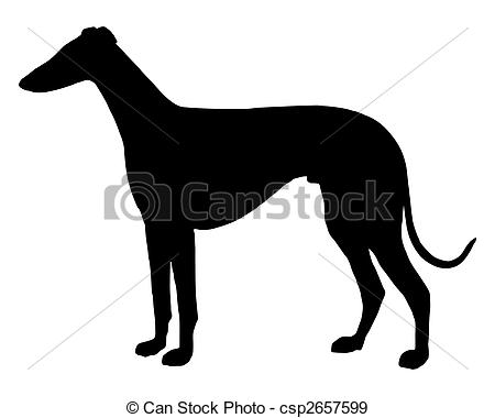 Greyhound Illustrations and Clipart. 554 Greyhound royalty free.