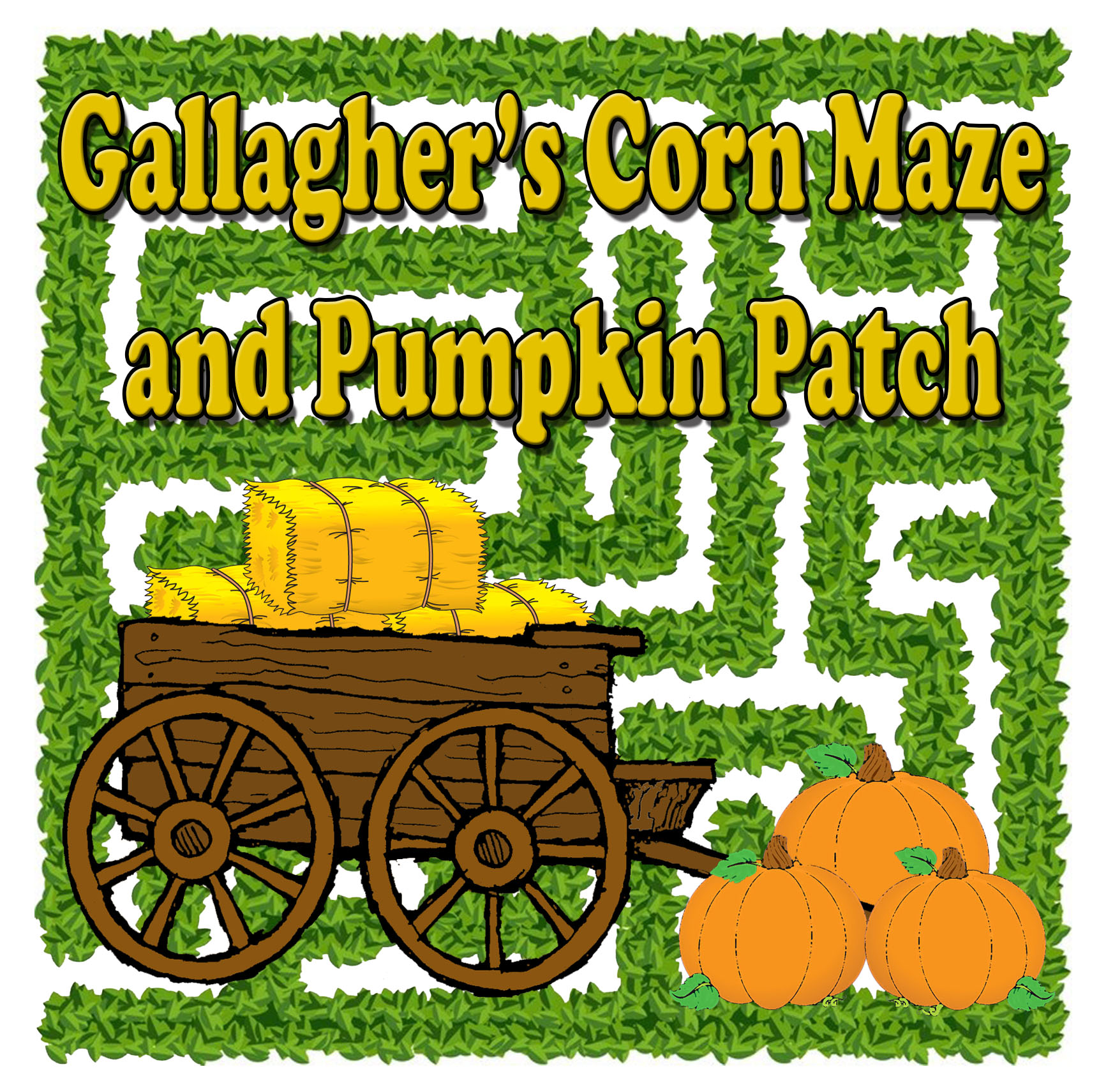 Gallagher's Corn Maze.