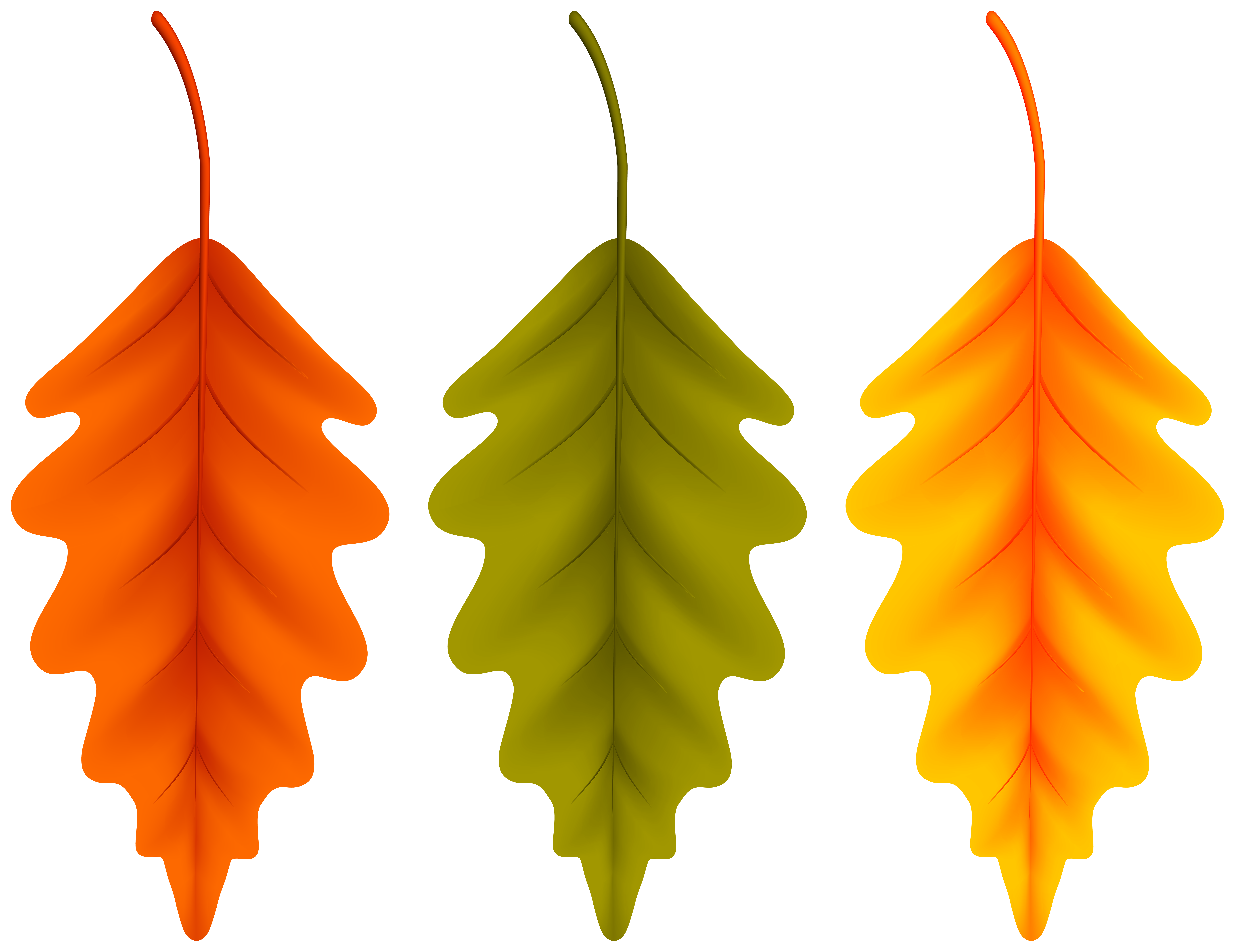 Autumn Set Leaves PNG Clipart.