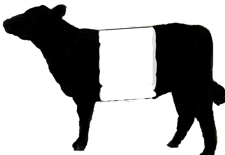 Galloway beef clipart - Clipground