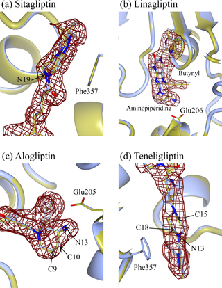 PLOS ONE: Comparative Binding Analysis of Dipeptidyl Peptidase IV.