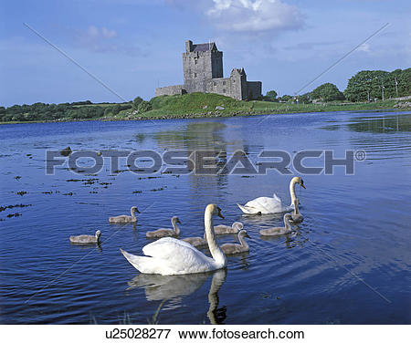 Picture of Republic of Ireland, County Galway, Kinvara, Family of.