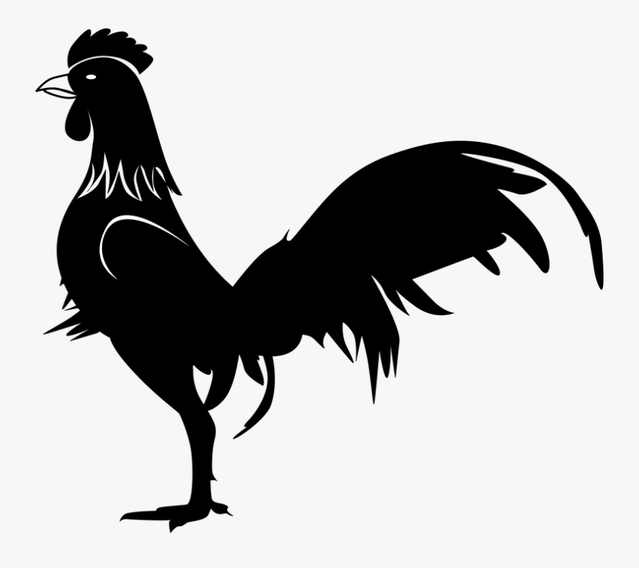 Rooster Images.