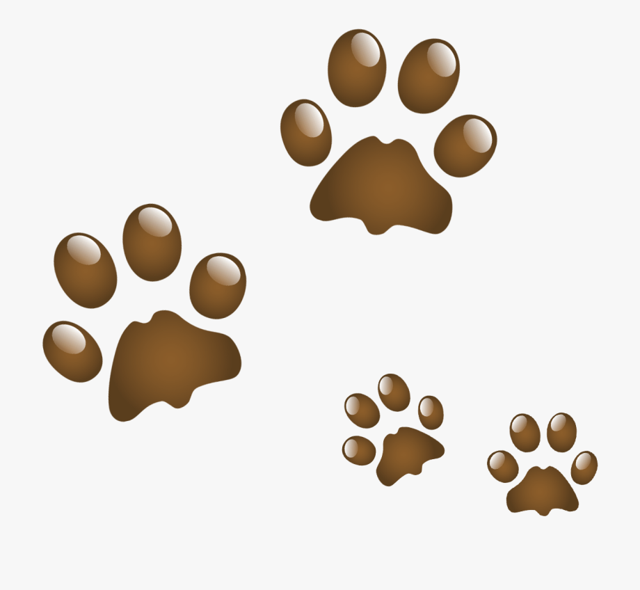 Anjing Clip Art Kucing Transparan Png.