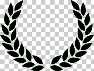 Laurel wreath Bay Laurel , Padi , Fred Perry logo PNG.