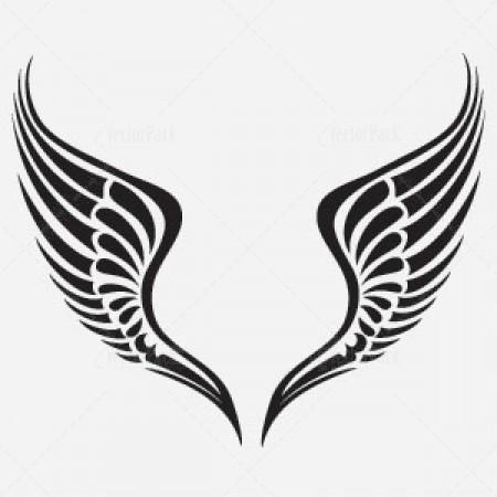 Wings Vector.