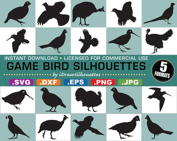Game bird clipart.