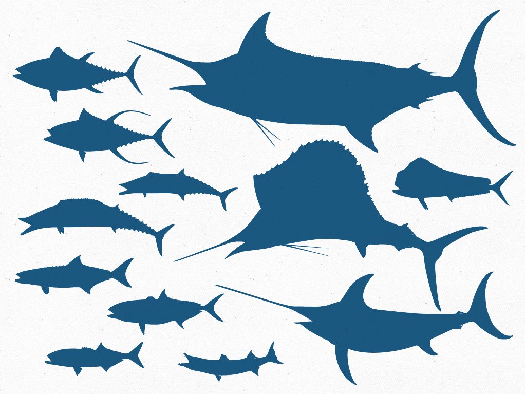 Free Fish Vector, Download Free Clip Art, Free Clip Art on Clipart.
