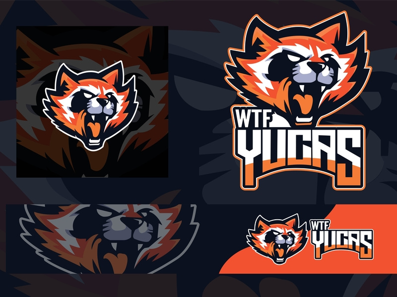 Raccoon Mascot Logo by Talha Kayani on Dribbble.