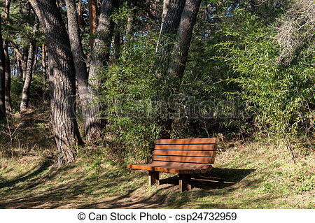 Stock Images of Bench in Forest.