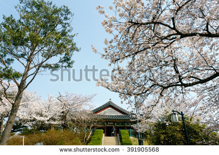 Gangneung Stock Photos, Images, & Pictures.