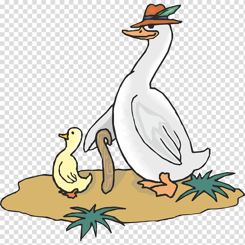 Goose Duck Ganso , goose transparent background PNG clipart.