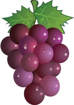 Free clipart grape vineyard free vector download (3,570 Free.